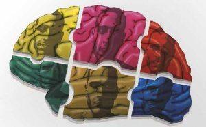 Les émotions ne sont pas des réactions dans votre cerveau