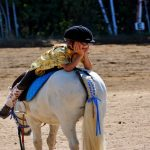 4 conseils pour developper son Intelligence Emotionnelle cheval intemotionnelle